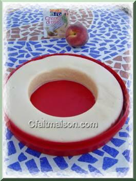 Les glaces sorbets et granit s sans produits laitiers for Glace a la peche sans sorbetiere