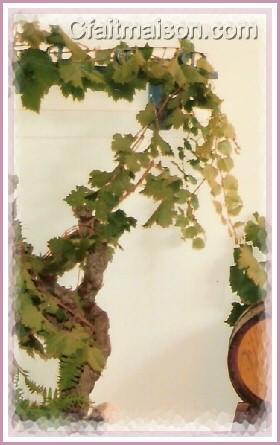 d coration de salle et de tables sur le th me des vendanges de la vigne et du vin. Black Bedroom Furniture Sets. Home Design Ideas