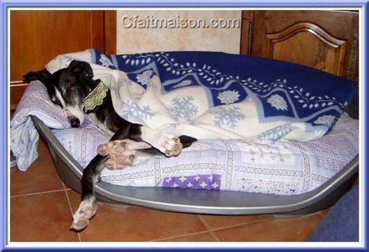 Parc pour chiot pas cher trouvez le meilleur prix sur - Fabriquer un panier pour chien ...