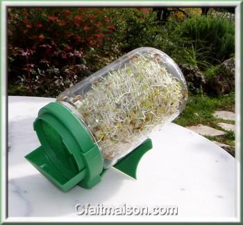 graines germ es germination avec un germoir les diff rents germoirs. Black Bedroom Furniture Sets. Home Design Ideas
